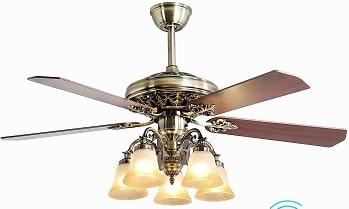 FINXIN Store Indoor Ceiling Fan