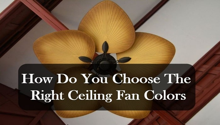 How Do You Choose The Right Ceiling Fan Colors