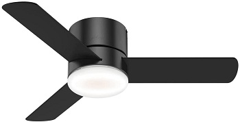 Hunter 59453 Transitional 44 Inch Flush Mount Ceiling Fan