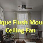 unique flush mount ceiling fans