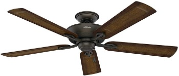 Hunter Caicos 52 in. New Bronze Wet Rated Ceiling Fan