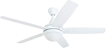 Prominence Home Ashby Ceiling Fan with Remote Control and LED Light