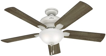 Hunter Matheston Indoor Outdoor Ceiling Fan with Pull Chain Control